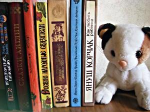 Детские книги на полке (Фото Юлии Руденко)