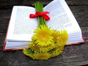 Букет одуванчиков на раскрытой Библии. Фото - Юлия Руденко.