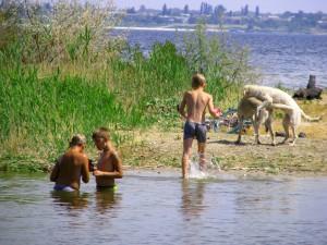 Купание на берегу Волги. Фото Юлии Руденко.
